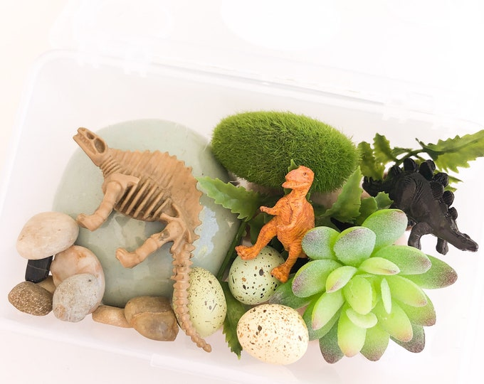 Dinosaur Fossil Play Dough Kit | Prehistoric Playdough Sensory Kit | Sensory Kit | Dino Toy | Busy Box | Montessori Toy | Open Ended Toy