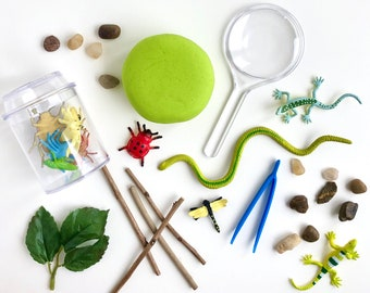 Nature Explorer Play Dough Kit | Insects Sensory Kit | Bugs Playdough Kit | Entomology | Kids Bug Kit | Open Ended Toy