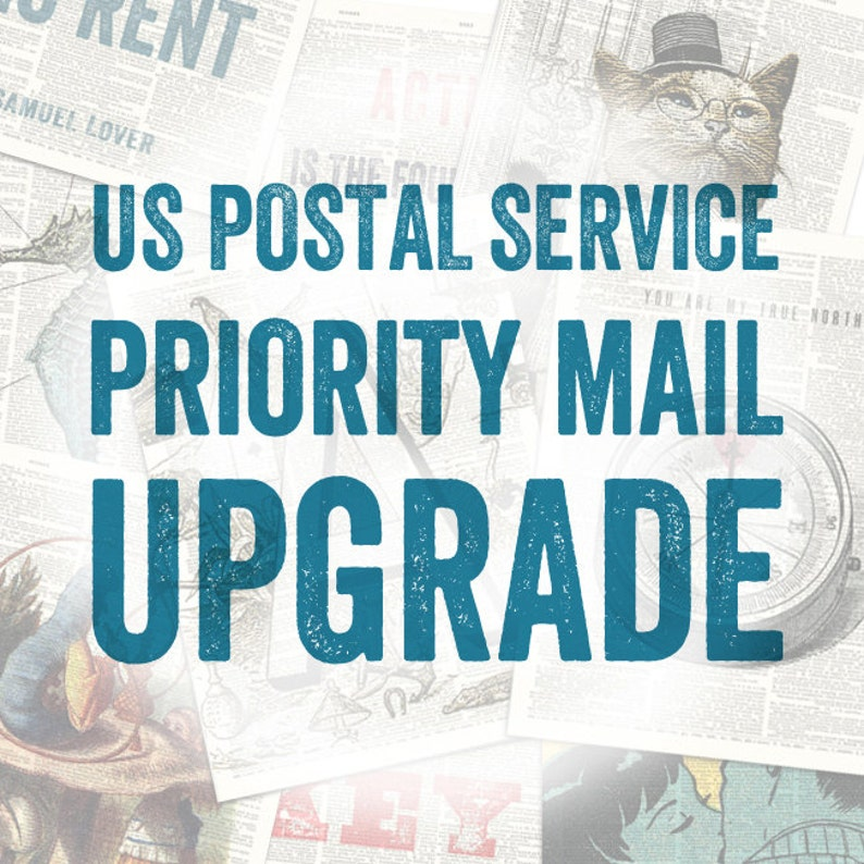 USPS Domestic Priority Mail Upgrade  Insured and Traceable image 0