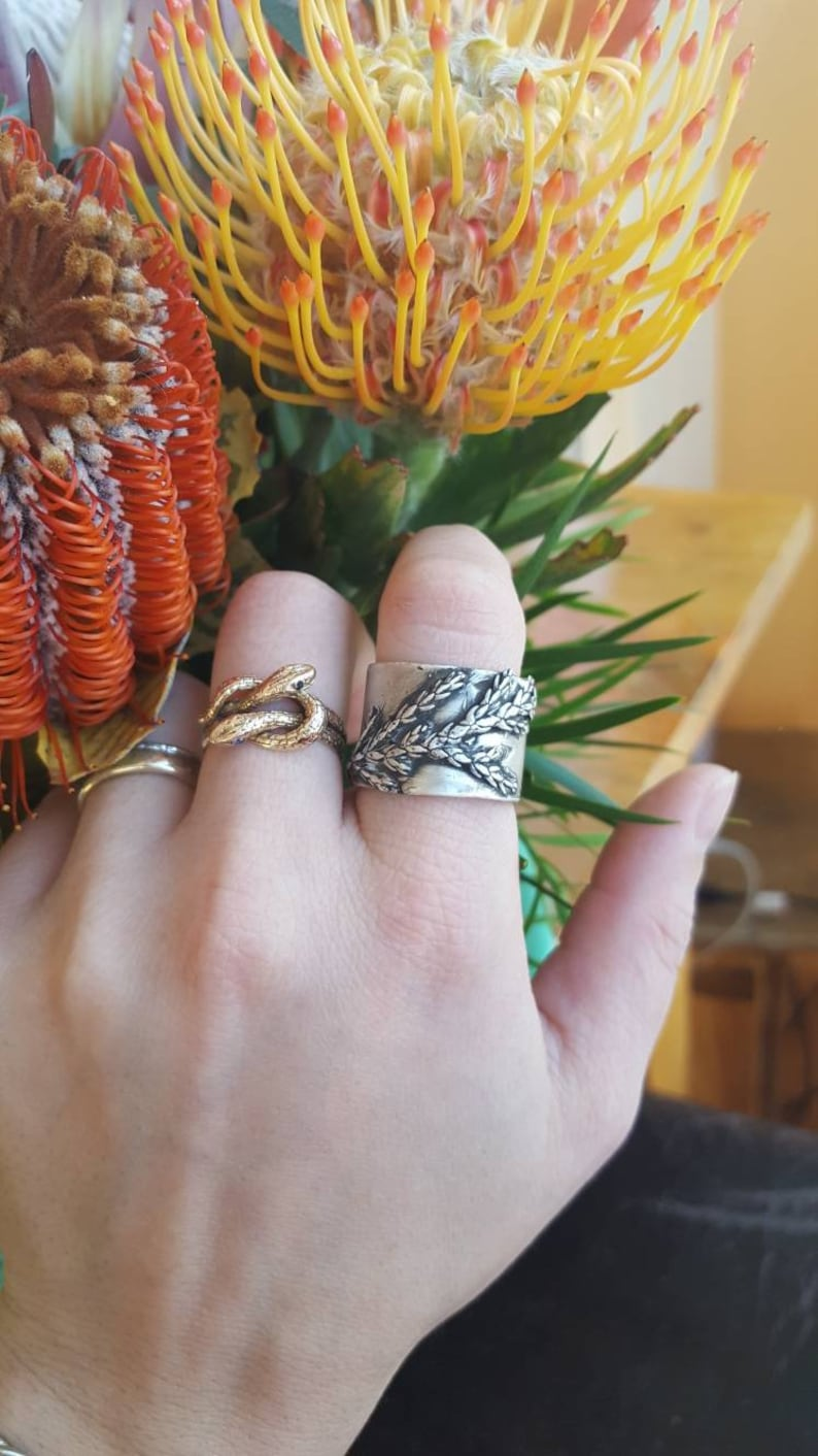 Large cypress ring