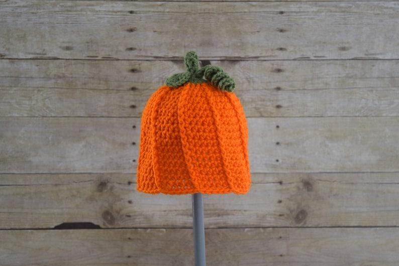 Pumpkin Hat   Fall Hat image 0
