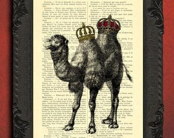 camel print, royal crown camel poster, dromedary dictionary print, camel king, egyptian camel decor, desert animal print home decor
