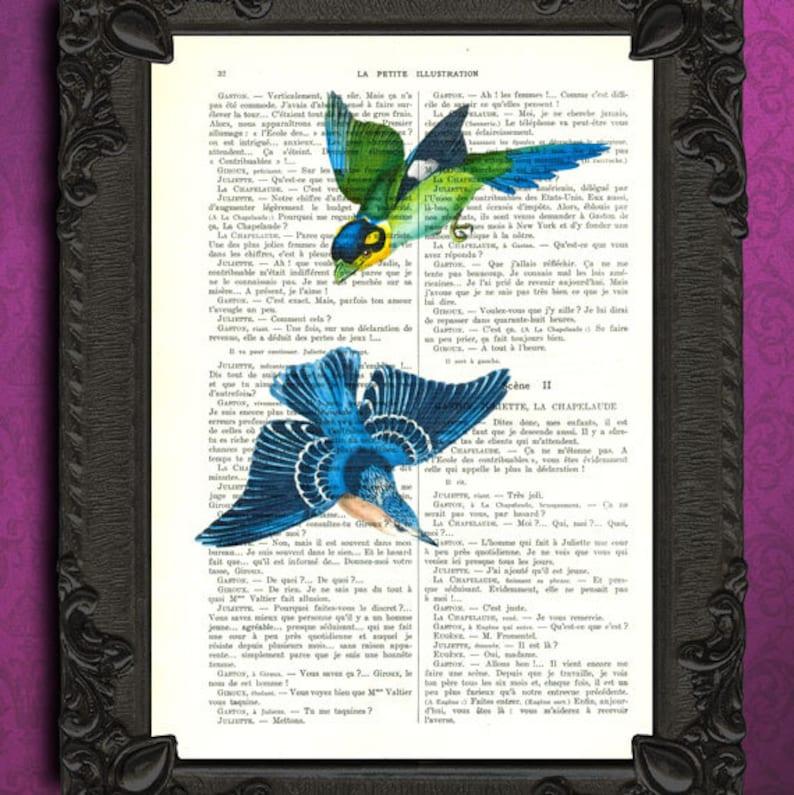 30b9b38b6a Bird artwork flying birds blue bird art print vintage   Etsy