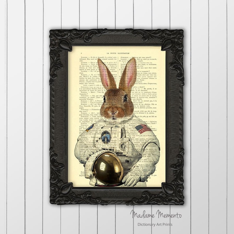 Rabbit astronaut in space poster funny animal poster for dorm decor space traveller bunny dictionary art print