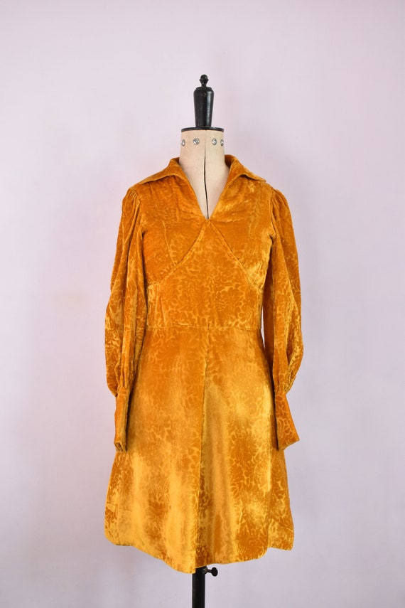 Vintage 1970s Devoré velvet gold mini dress - 70s… - image 2