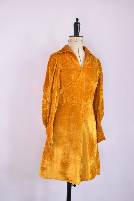 Vintage 1970s Devoré velvet gold mini dress - 70s… - image 5
