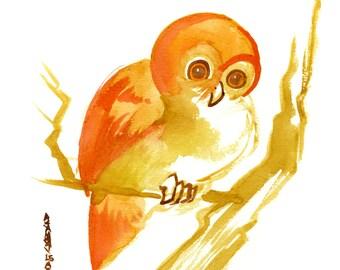 Owl, Original Watercolor Painting