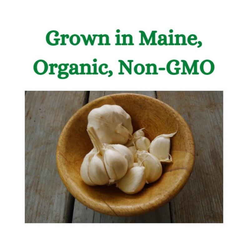 Organic Garlic  Hardneck Garlic  Organic Seed  Bulbs  Non image 0