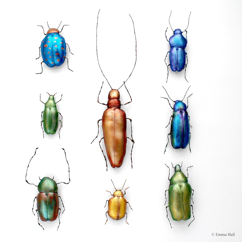 Beetle Collection Sewing Pattern and Tutorial PDF Digital image 0