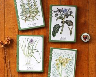 Herbs, Original Hardcover - One-of-a-Kind Coptic Notebook & Sketchbook - 'Sweet Woodruff' 'Parsley' 'Sweet Cicely' 'Oregano' 'Rocket'