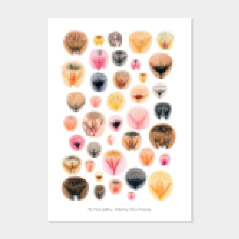 Large Art Print  Vulva Variety I  The Vulva Gallery image 0