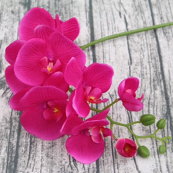 Hot Pink Orchid Wedding Centerpieces Artificial Silk Orchid Etsy