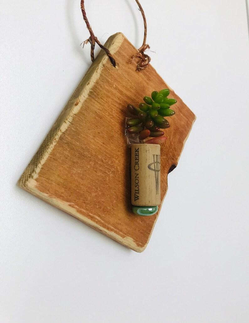 Cork Succulent Plaque