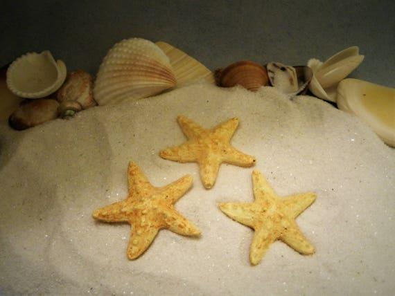 Miniature Dollhouse FAIRY GARDEN Accessories ~ Set of 3 BEACH Sea Mini Starfish