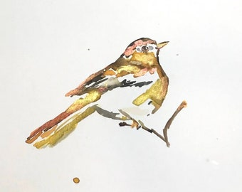 "Original Watercolor Bird Painting, ""Heart of Gold"" by Jessica Buhman 9"" x 12"" Original Bird Painting, Warbler Painting"