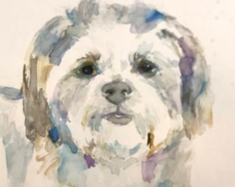 "Original Watercolor Maltese Shih Tzu, ""Maltese"" by Jess Buhman, 9"" x 12"" Original Painting on Cold Press Paper, Original Dog Art"