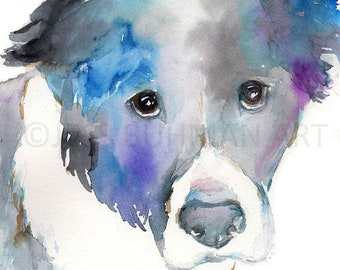 """Border Collie Dog Watercolor Print, """"Silver"""" Dog 8 x 10 print, Dog Painting, Dog Watercolor, Dog Illustration, Pet Portrait, Abstract Dog"""