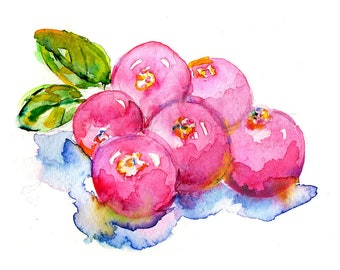 Cranberries by Jessica Buhman, Print of Cranberries, Fruit Watercolor, 8 x 10 Red Pink Colorful Watercolor Fruit Kitchen Art