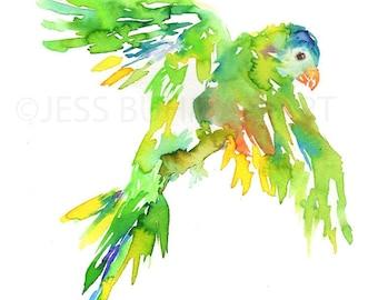 "Print of Original Watercolor Painting, Titled: ""Rainbow Lorikeet"" by Jessica Buhman  Green Yellow Bird Flying"