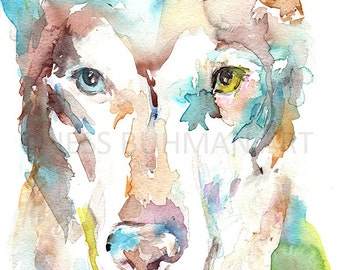 Wolf Watercolor Print, Abstract Wolf Painting, Print of Wolf, Watercolor Husky Painting, Abstract Husky Art, Colorful Wolf Painting
