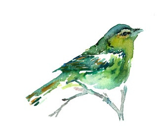 """Print of Original Watercolor Painting, Titled: """"Emerald the Bird"""" by Jessica Buhman 8 x 10 Green White"""