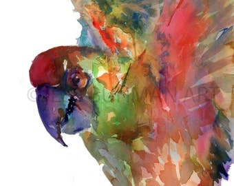 """Print of Original Watercolor Painting, Titled: """"Macaw Taking Flight"""" by Jessica Buhman 8 x 10 Green Yellow Red Blue Parrot Bird"""