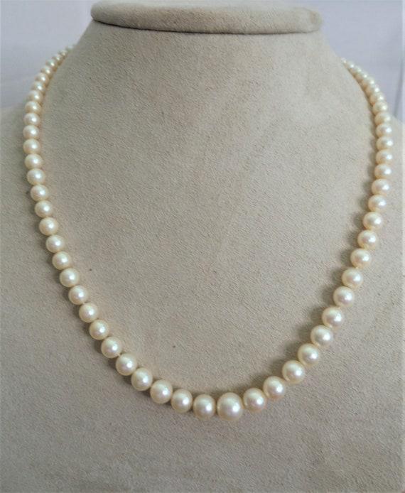 Vintage Faux Pearl Necklace - image 1