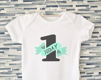 First Birthday Bodysuit, Mint and White - Unisex Birthday Onesie,  1 Today Bodysuit, Cake Smash Outfit, Birthday Babygrow, Birthday Tshirt