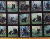 24 quot X 44 quot Panel Black Bears Cubs Cute Animals Wildlife Scenic Blocks Squares Tender Moments Black Cotton Fabric Panel (9606BLACK) D478.33