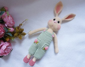 Bunny with outfit crochet pattern ( not include the process of embroidered flower )