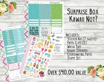 Planner Surprise Box - Kawaii Not - Planner Accessories - Planner Subscription Box - Erin Condren - Happy Planner - Mystery Box - Sub Box