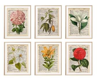 Vintage Botanical Print Set, Gift For Her, Gift For Mom, Dictionary Art, Bathroom Art, Living Room decor, Bedroom Art, Floral Art Print