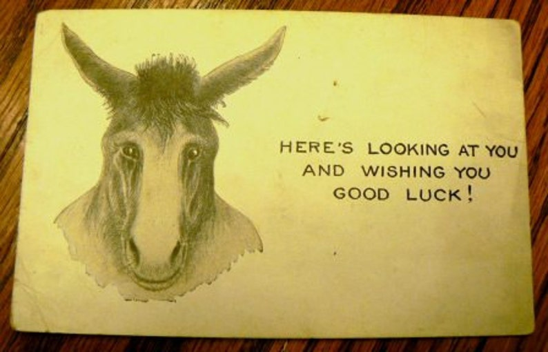 vintage postcards ... DONKEY COMIC Here's Looking At You image 0