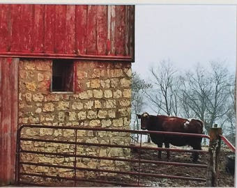 Days Gone By  (The Farm Collection) by Susan A Ray of OneHealingStone Studio
