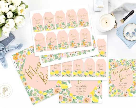 Mimosa Bar Drink Tags, Mimosa Bar Sign, Champagne Bar Labels, Mimosa labels,  Drink Labels, Mimosa Tags, Juice Tags, Mimosa Sign