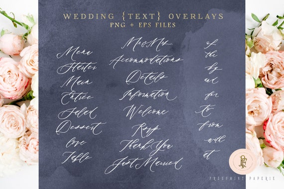 Modern Calligraphy Text overlays - photo overlay - wedding overlays - calligraphy overlays - beautiful typography - freshmint paperie