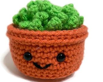Handmade Crochet Amigurumi Succulent Plushie - Plant Lovers- Office Decore