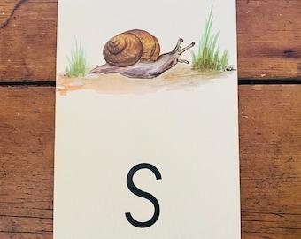 """Vintage School Alphabet Picture Card """"S"""""""