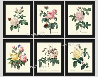 a91e54ecaef5 BOTANICAL Print SET of 6 Art Prints Redoute Beautiful Yellow Pink White  Roses Flowers Butterflies Interior Design Home Wall Room Decor