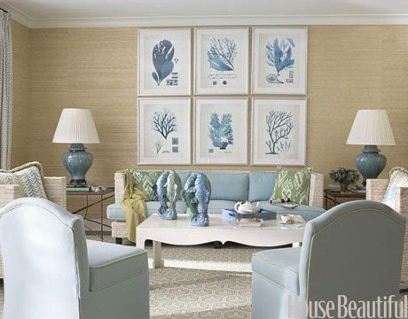 CORAL PRINT Ellis  Art Print 17 Beautiful Antique Sea Ocean Blue Coral Nature to Frame Home Decoration Wall Hanging