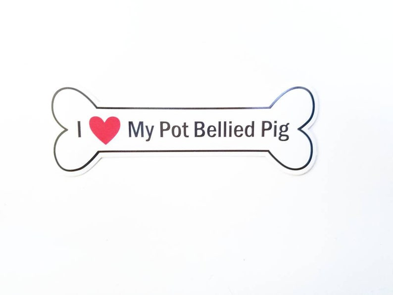 I Heart My Pot Bellied Pig Bumper Sticker  White Bone-Shaped image 0