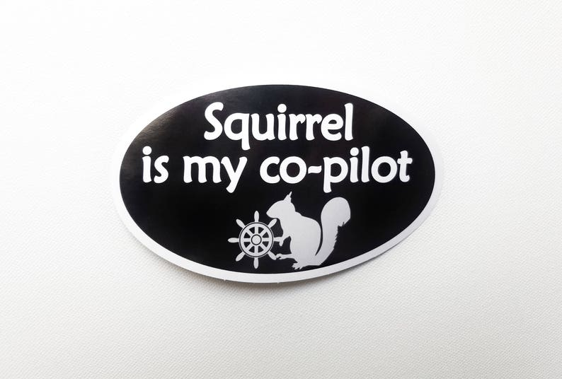 Squirrel is my co-pilot Bumper Sticker  Black with white image 0