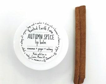 Autumn Spice Lip Balm, Fall Lip Balm, Pumpkin Spice, Herbal Lip Balm, Organic Lip Balm, Natural Lip Gloss, Handmade Lip Balm