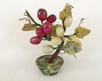 Grape Bonsai Tree Etsy