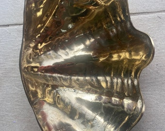 Large brass clam shell