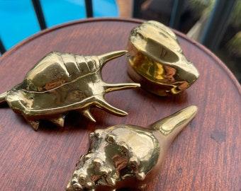 Brass shells. - solid x 3
