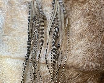 Amber emu feather earrings