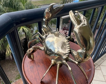 Brass mud crab
