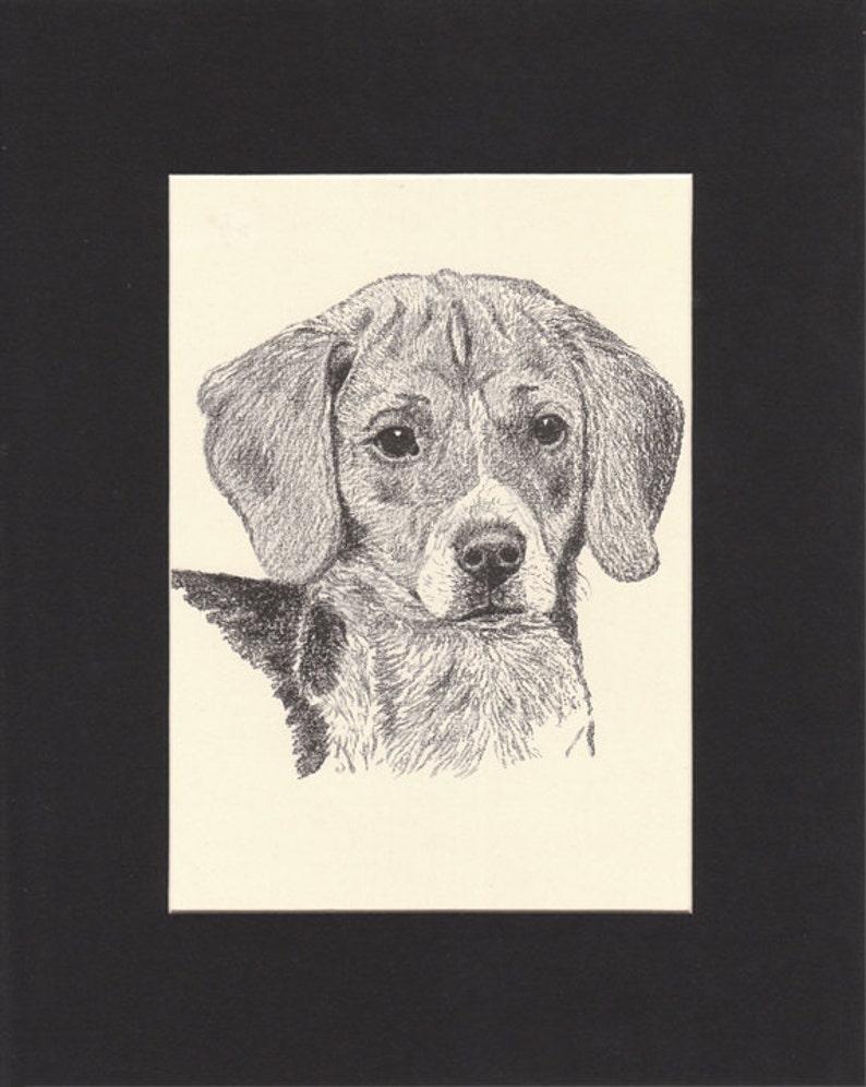 Beagle Vintage Dog Print C.Francis Wardle 1935 Drawing Mounted image 0