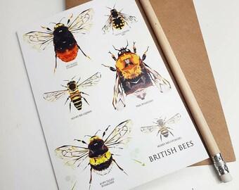 BRITISH BEES Greeting Card- Gardens - Nature - Bumblebees - Scottish - Highlands - Greeting Card - Illustration - Nature Lover